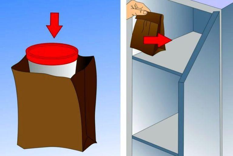 Хранение кала в холодильнике