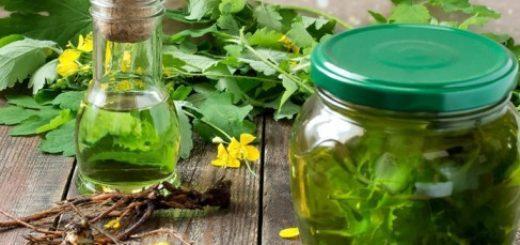 какие травы снижают холестерин и сахар