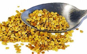 Перга пчелиная: полезные свойства и противопоказания
