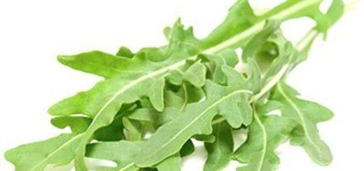 Руккола (салат) – польза и вред