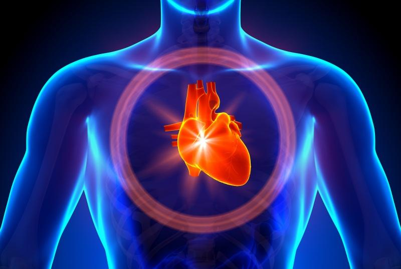 Serdtse cheloveka - Heart disease names list of symptoms and signs treatment and prevention of diseases