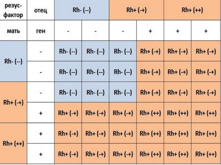 Совместимость группы крови для зачатия ребенка