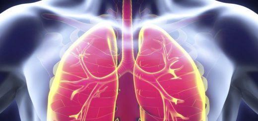 Основные отличия бронхита и пневмонии