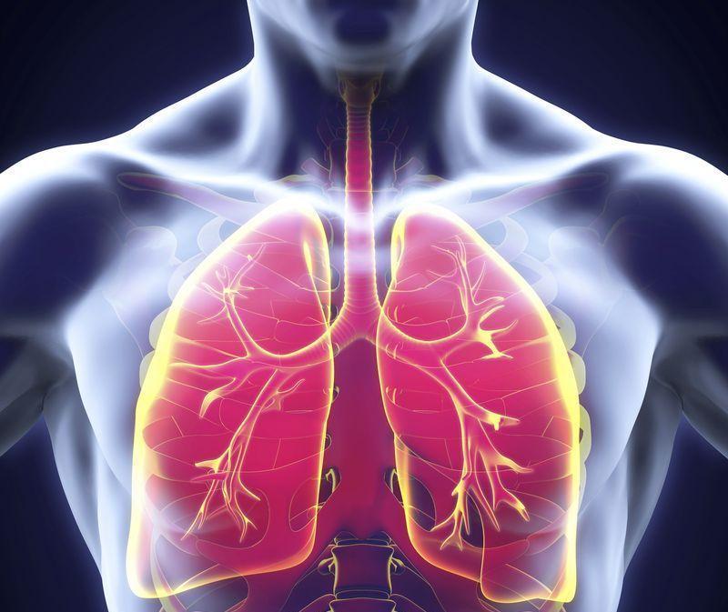 Как отличить бронхит от пневмонии – у ребенка или взрослого
