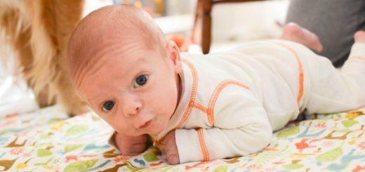 Когда малыш начинает держать головку самостоятельно?